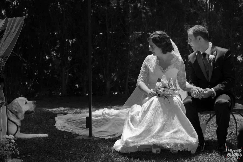 Fotógrafos de Boda en Valencia y Castellón. Perro en la boda