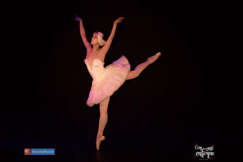 la muerte del cisne ballet Gala solidaria
